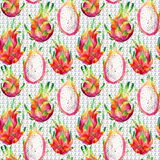 Watercolor dragon fruit seamless pattern on doodle background. Watercolor pitaya retro background. Hand painted exotic fruit illustration Royalty Free Stock Photo