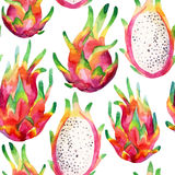 Watercolor dragon fruit seamless pattern on white background Stock Photography
