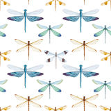 Watercolor dragonflies pattern Royalty Free Stock Photo