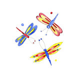Watercolor dragonflies on white background. Watercolor summer bright dragonflies on white background Stock Photography
