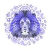 Watercolor drawing of an animal of a mammal predator, a blue lion, a blue mane, a lion-king of beasts, a portrait of greatness, st. Rength, kingdom, india Royalty Free Stock Photos