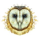 Watercolor drawing of an animal predator bird owl, common owl, portrait of an owl, white owl, feathers, white background for decor Royalty Free Stock Image