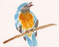 Watercolor drawing bird on a branch Royalty Free Stock Images