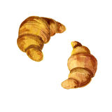 Watercolor drawing croissants Stock Image