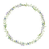 Watercolor drawing floral frame Stock Photos