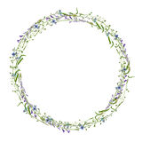 Watercolor drawing floral frame Stock Photo
