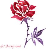 Watercolor drawing flower Stock Photos