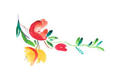 Watercolor drawing of fresh garden flowers, summer meadow bouquet aquarelle painting Stock Photography