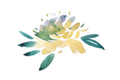 Watercolor drawing of fresh garden flowers, summer meadow bouquet aquarelle painting Royalty Free Stock Images