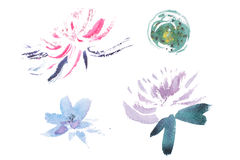 Watercolor drawing of fresh garden flowers, summer meadow bouquet aquarelle painting.  royalty free illustration
