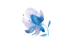 Watercolor drawing of fresh garden flowers, summer meadow bouquet aquarelle painting Royalty Free Stock Photo