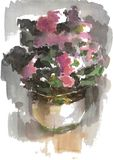 Watercolor drawing, illustration. Home flowers in a pot. royalty free stock photo