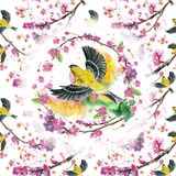 Watercolor drawing seamless pattern on the theme of spring, heat, illustration of a bird of a sparrow-like fleet of Orioles flying. With open wings, feathers Royalty Free Stock Photos