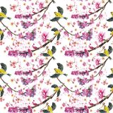 Watercolor drawing seamless pattern on the theme of spring, heat, illustration of a bird of a sparrow-like fleet of Orioles flying. With open wings, feathers Stock Image