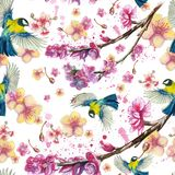 Watercolor drawing seamless pattern on the theme of spring, heat, illustration of a bird of a troop of passerine-shaped large tits. Flying, with open wings Stock Image