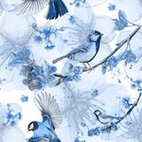 Watercolor drawing seamless pattern on the theme of spring, heat, illustration of a bird of a troop of passerine-shaped large tits. Flying, with open wings Royalty Free Stock Images