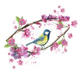 Watercolor drawing seamless pattern on the theme of spring, heat, illustration of a bird of a troop of passerine-shaped large tits. Flying, with open wings Royalty Free Stock Photography