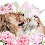 Watercolor drawing - two lions in flowers, animal, cat stock illustration