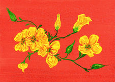 Watercolor drawing. yellow flower on red Royalty Free Stock Image