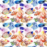 Watercolor drawings of bright fish and corals vector illustration