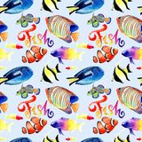 Watercolor drawings of bright red sea fish. Seamless patterns Royalty Free Stock Photography