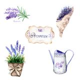 Watercolor drawings in Provence style. set: bouquet, jug, vase, lavender vector illustration