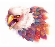Watercolor Eagle Royalty Free Stock Photography