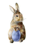 Watercolor Easter bunny with colored egg. Hand painted card with traditional symbols isolated on white background. Cute Stock Image