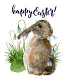Watercolor Easter card with bunny and snowdrops. Hand painted print with traditional symbols isolated on white Royalty Free Stock Images