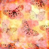 Butterfly texture modern pattern classic Royalty Free Stock Images