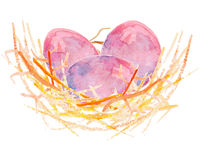 Watercolor Eggs in a nest. Watercolor vector illustration eggs in a nest Stock Photo