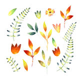 Watercolor elements2 Royalty Free Stock Photography