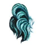 Watercolor emerald rooster illustration. Turquoise color rooster tail. Chinese New Year of the rooster. Hand drawn painted isolated on white background. Rustic Royalty Free Stock Photography
