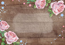 Watercolor english roses on wooden background. Hand drawn watercolor image royalty free stock images