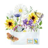 Watercolor envelope with wild floral garden. Wildflowers greenery plants and butterfly. Bright flowers