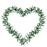 Watercolor eucalyptus heart wreath. Hand painted border with eucalyptus branch and leaves isolated on white background. Botanical illustration for design royalty free illustration