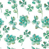 Watercolor eucalyptus leaves and branches, succulent, clover.  Shamrock. Royalty Free Stock Image