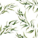 Watercolor eucalyptus leaves seamless pattern on white background. Floral texture for design, textile and background. Stock Photos