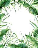 Watercolor exotic floral frame. Hand painted tropic border with palm tree leaves, banana and magnolia leaves isolated on Royalty Free Stock Photography
