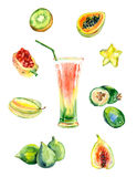 Watercolor exotic fruits juice. Royalty Free Stock Images