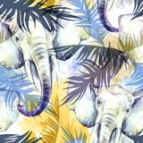 Watercolor exotic seamless pattern. Elephants with colorful tropical leaves. African animals background. Wildlife art Stock Photos