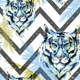 Watercolor exotic seamless pattern. Tigers with colorful tropical leaves on geometric texture. African animals. Background. Wildlife art illustration. Can be Royalty Free Stock Photos