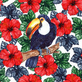 Watercolor exotic tropical flower hibiscus animal bird toucan seamless pattern texture background Royalty Free Stock Photography