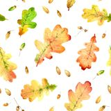 Watercolor fallen oak leaves hand drawn seamless pattern. Watercolor fallen oak leaves hand drawn colorful bright seamless pattern Vector Illustration