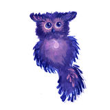 Watercolor fantasy owl Royalty Free Stock Image
