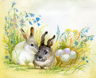 Watercolor Fauna Collection: Rabbit. Two beautiful rabbit on the grass near the egg Royalty Free Stock Photos