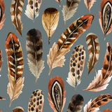 Watercolor feather background Stock Image