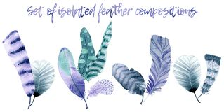 Watercolor feather compositions vector illustration