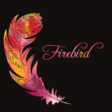 Watercolor feather of firebird. Watercolor silhouette decorative feather of firebird at black background, hand drawn vector illustration Royalty Free Stock Image