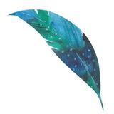 Watercolor feather Stock Photos